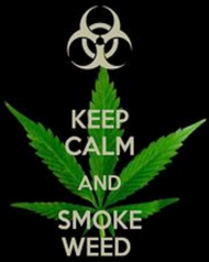 t-shirt keep calm and smoke weed