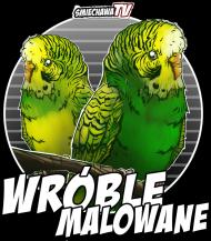 Bokserka - Wróble B&W