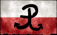 Koszulka Polska Walcząca