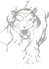 Koszulka z panterą