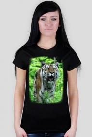 Koszulka tygrys damska