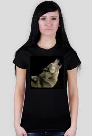 Wilk - koszulka damska