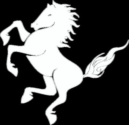 Koszulka z koniem 2