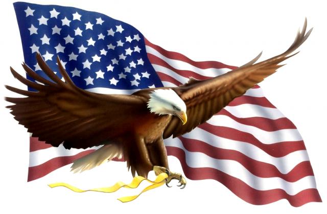 Αποτέλεσμα εικόνας για γεράκι αμερική σημαίες