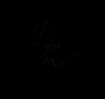 PL13 Orzeł - Czarny