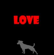 Kochaj JRT swego...