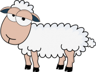 Owca - koszulka dziecięca