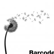 Barcode She