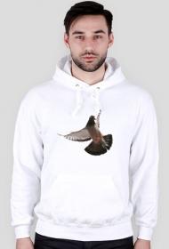Bluza hodowca gołębi #1