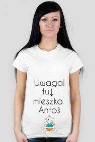 Foszkowa koszulka z Antosiem