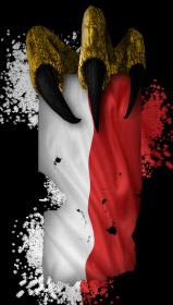 Flaga z pazurem - bluza