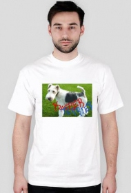 Kacper Terrier - męska