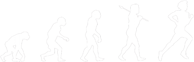Koszulka Ewolucja Biegacza (czarna)