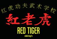 kung fu - bluza