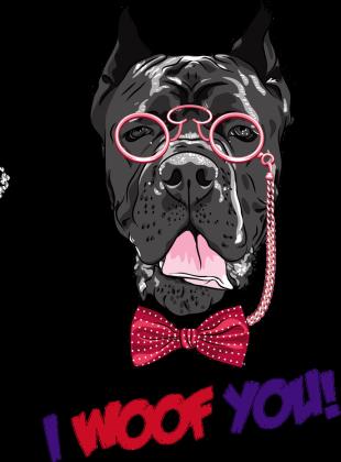 Bluza męska pies okulary