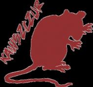 kawszczur 03