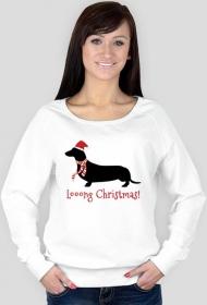 Damska świąteczna bluza - Jamnik