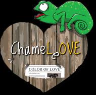 Chameleon Love