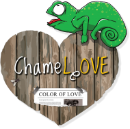 Chameleon Love - damska