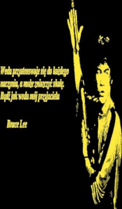 Bruce Lee cytat 2
