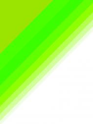 damska zielono biała