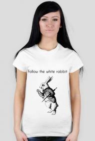Koszulka Podążaj za białym królikiem