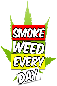 smoke weed every day :)