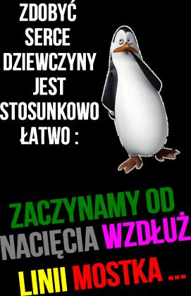 Pingwiny z Madagaskaru - Kowalski 1 ~Męska~