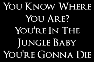 Koszulka Guns N' Roses (Welcome To The Jungle - You Know Where You Are?) - www.gunsnroses.com.pl