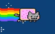 nayn cat