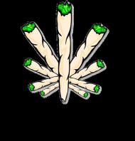 Bluza joint white