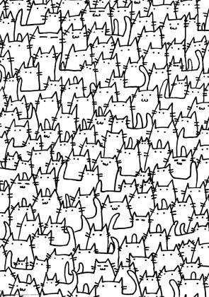 Stado kotów