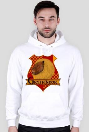 Bluza Harry Potter Gryffindor kaptur