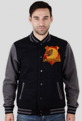 Bluza Harry Potter Gryffindor college