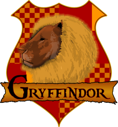Bluza Damska Harry Potter Gryffindor