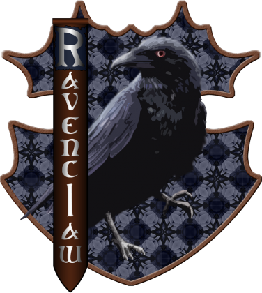Bluza Harry Potter Ravenclaw kaptur