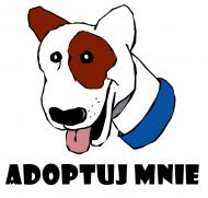 Adopcja