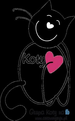 KOTY_02_bluza