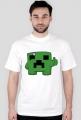 Super Minecraft Boy