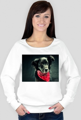 Bluzka damska Pies