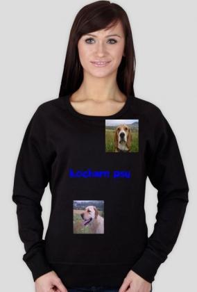 kochamy psy