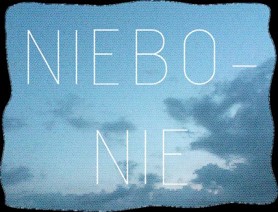 NIEBOnie T