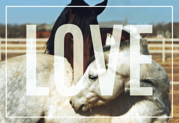 Ekotorba LOVE 2