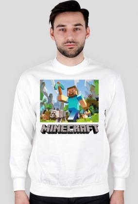 Bluzka Minecraft