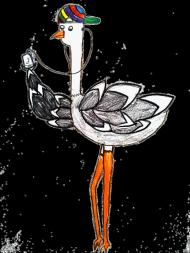 Muzyczny ptaszek