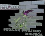 home - torba