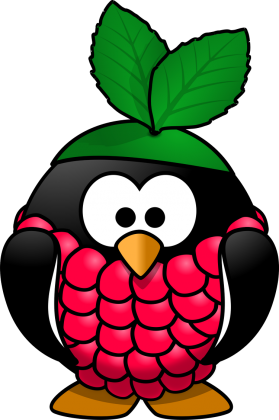 Koszulka Raspberry Pi Linux