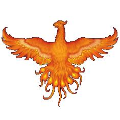 PtakOnline